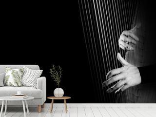 Harp player. Hands playing Irish harp strings closeup