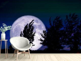 Full Worm Moon and silhouette tree in the field and night sky