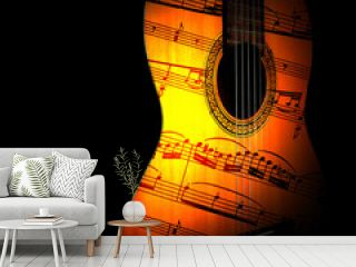 Acoustic guitar. Classical guitars closeup