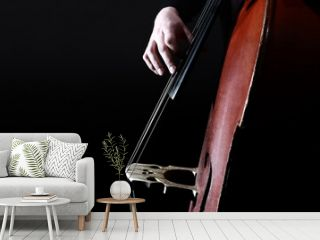 Double bass strings. Hands playing contrabass player.