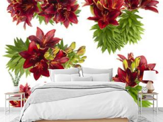 Red lily flower. Set of flowers isolated on white background. Cutout plants for garden design or landscaping. High quality clipping mask for professionnal composition. Flower bed.