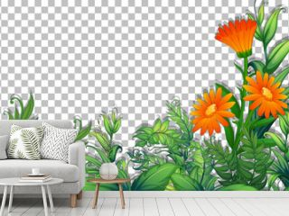 Flower and tropica leaves frame template on transparent background