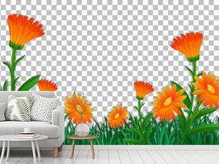 Orange flower field frame template on transparent background
