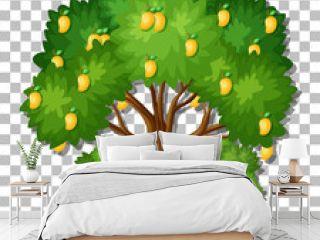 Mango tree on transparent background