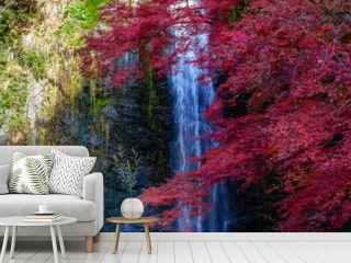箕面の大滝と紅葉