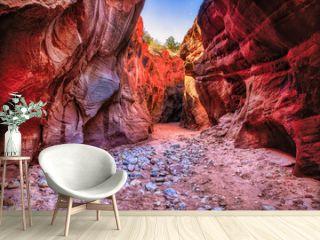 Landscape scene inside Buckskin Gulch Slot Canyon