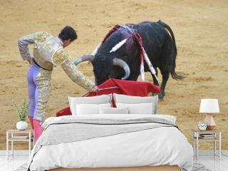 bullfighting in seville, spain.