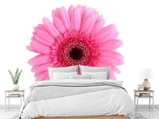 Perfect Pink Gerbera