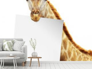 White Paper on the brink of a giraffe