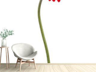 Red gerbera on a bent stem