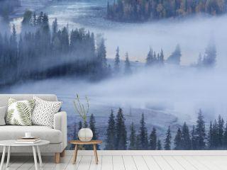 tranquil autumn in fog