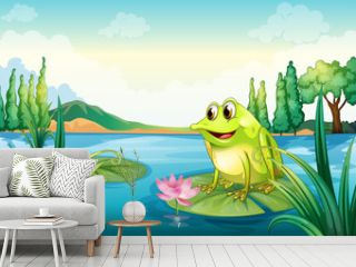 A frog at the river