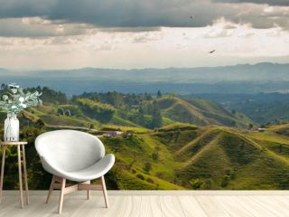 Panorama in the coffee triangle region of Colombia