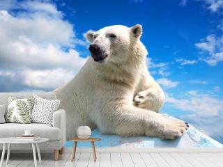 polar bear against sky