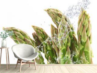 asparagi splash