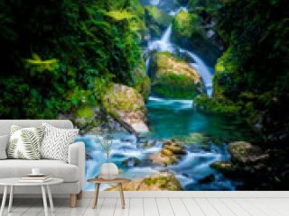 Mackay Falls in Milford track, New Zealand
