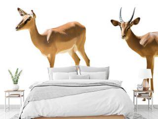 Set of impalas