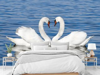 pair of white swans