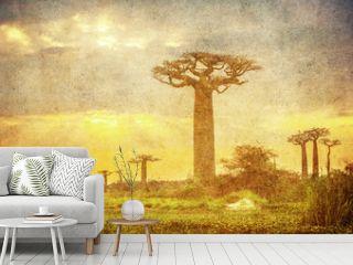 Vintage image of Baobabs avenue, Madagascar