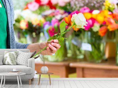 Florist arbeitet im Blumenladen mit Blumen