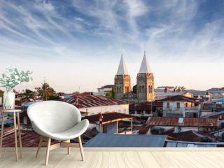 stonetown zanzibar roof-top view over city