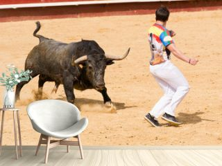 Competición de recortes con toros bravos. En esta competición se usa el propio cuerpo para torear