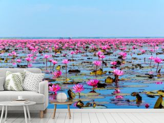 Sea of pink lotus in Udon Thani, Thailand