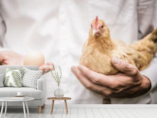 Paradox of the Chicken and the Egg