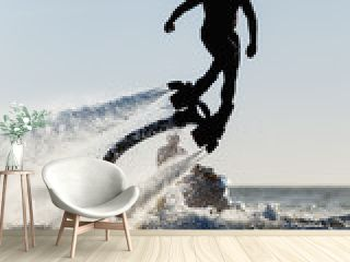 Silhouette of a fly board rider