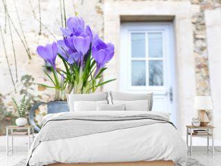 crocus sur une table en terrasse