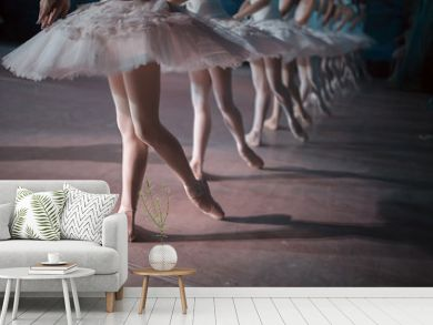 Dancers in white tutu synchronized dancing