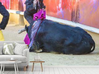 El arte del toreo y la polémica del maltrato animal de los toros en la corrida