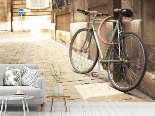 Vintage bike parked in the street
