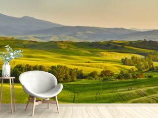 Tuscany hills, panorama shoot
