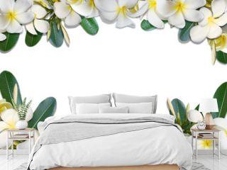 Frangipani flowers and leaf frame isolate on white background