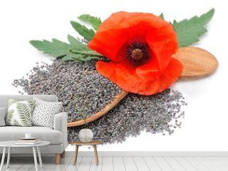 Poppy seed with poppy flowers