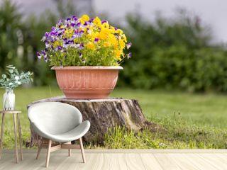 Pansies in Flower Pot on Tree Stump
