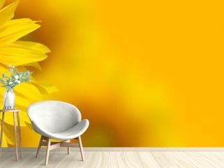 Yellow sunflower background