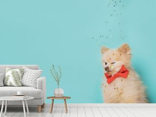 little dog with bow . space for text