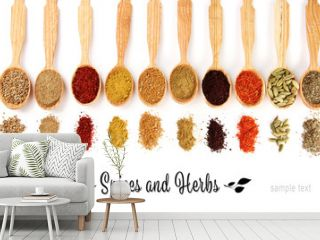 Different spices in wooden spoons, isolated on white