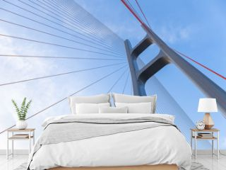 the cable stayed bridge closeup