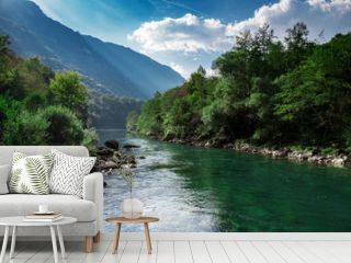 Mountain clear river and green forest, nature landscape