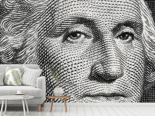 US president George Washington face portrait on the USA one dollar bill macro, united states money closeup