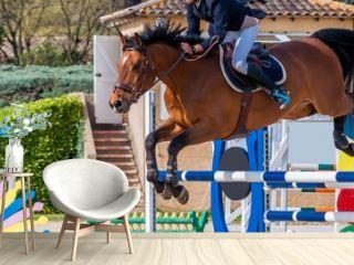 Equitation, saut d'obstacle, compétition.