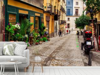 Old street with flowers in Madrid. Spain