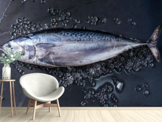 Raw fresh whole tuna fish on crushed ice over dark wet metal background. Top view with space