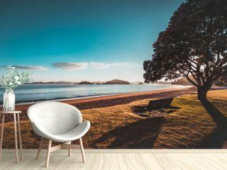Sunrise in New Zealand Paihia Beach