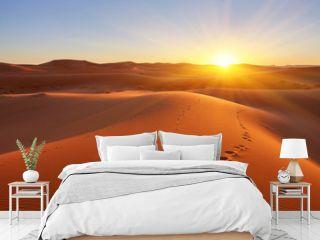 Beautiful sand dunes in the desert