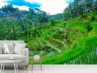 Beautiful landscape with green rice terraces near Tegallalang village, Ubud, Bali, Indonesia