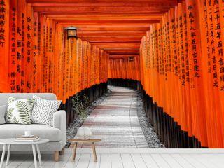 Gate to heaven, Kyoto, Japan